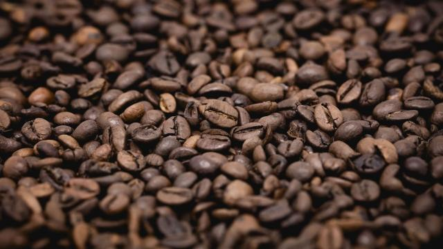 Climate Change Could Hurt Ethiopia's Ability to Grow Coffee