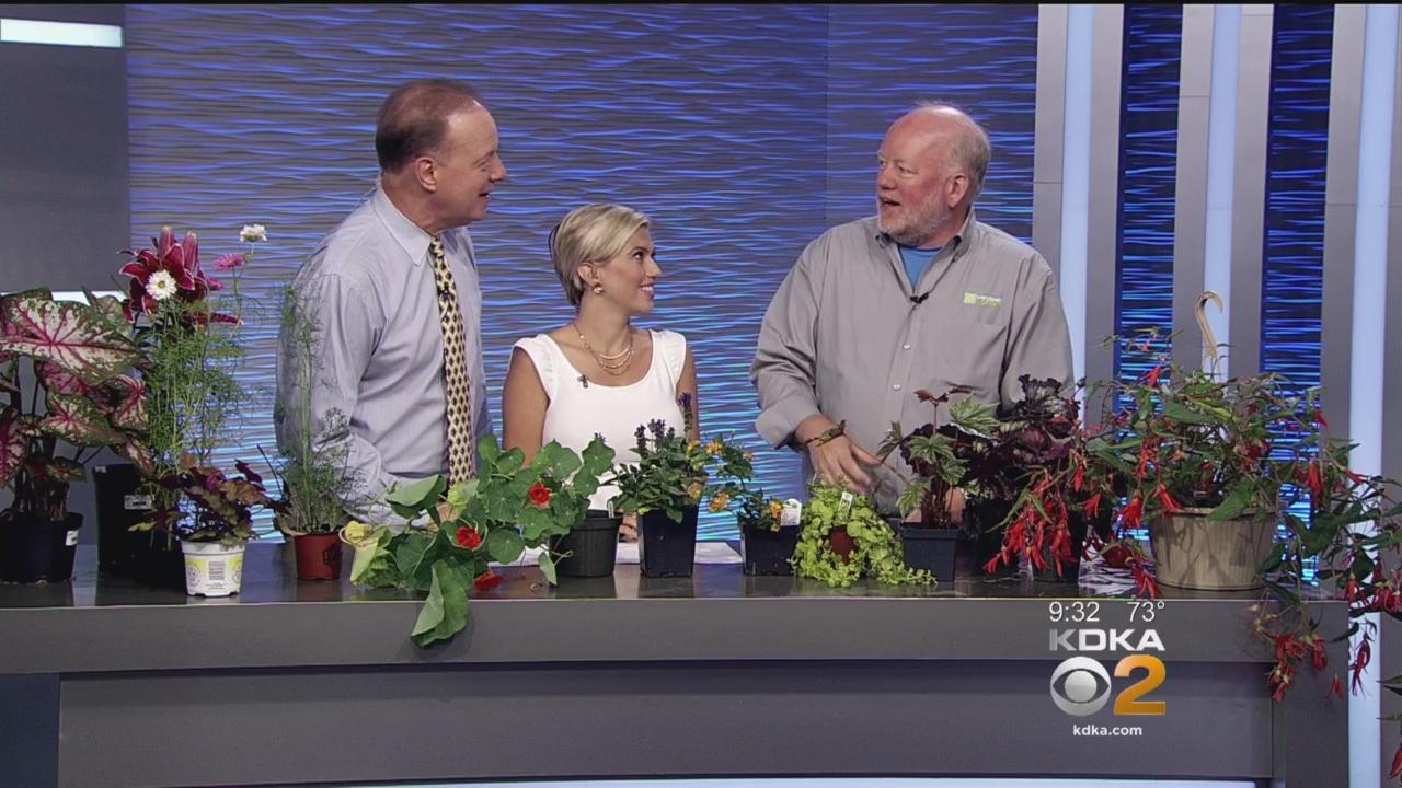 Doug Oster Top 10 Easy Plants To Grow