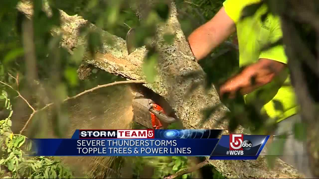 Storms topple trees, rip down power lines