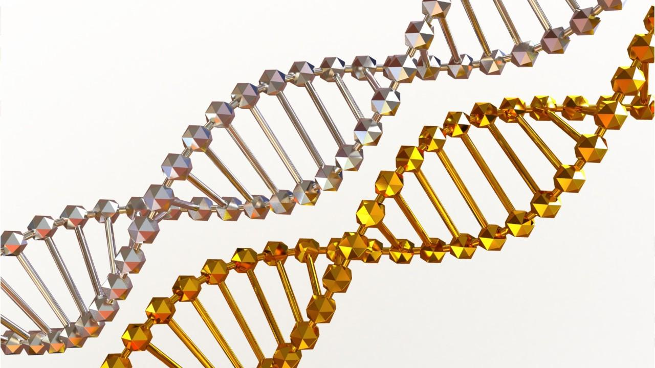Gene Sequencing Has Big Implications for Rare Diseases