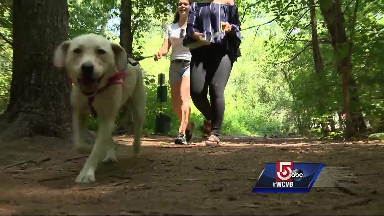 New effort to get people to pick up after their pets