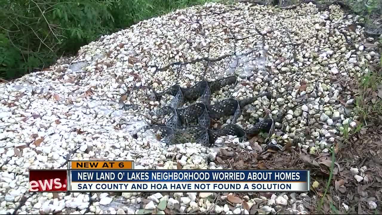 Land O'Lakes residents seeing backyards erode away