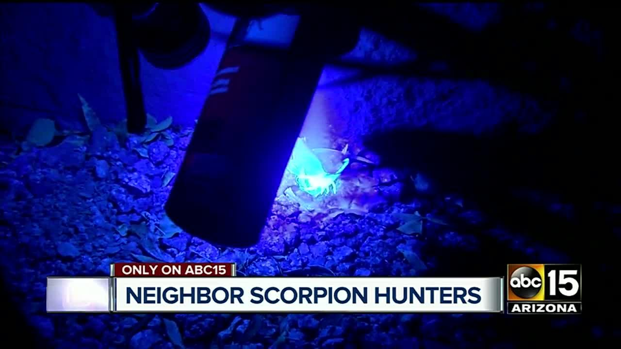 Neighborhood group of scorpion hunters set out on foot