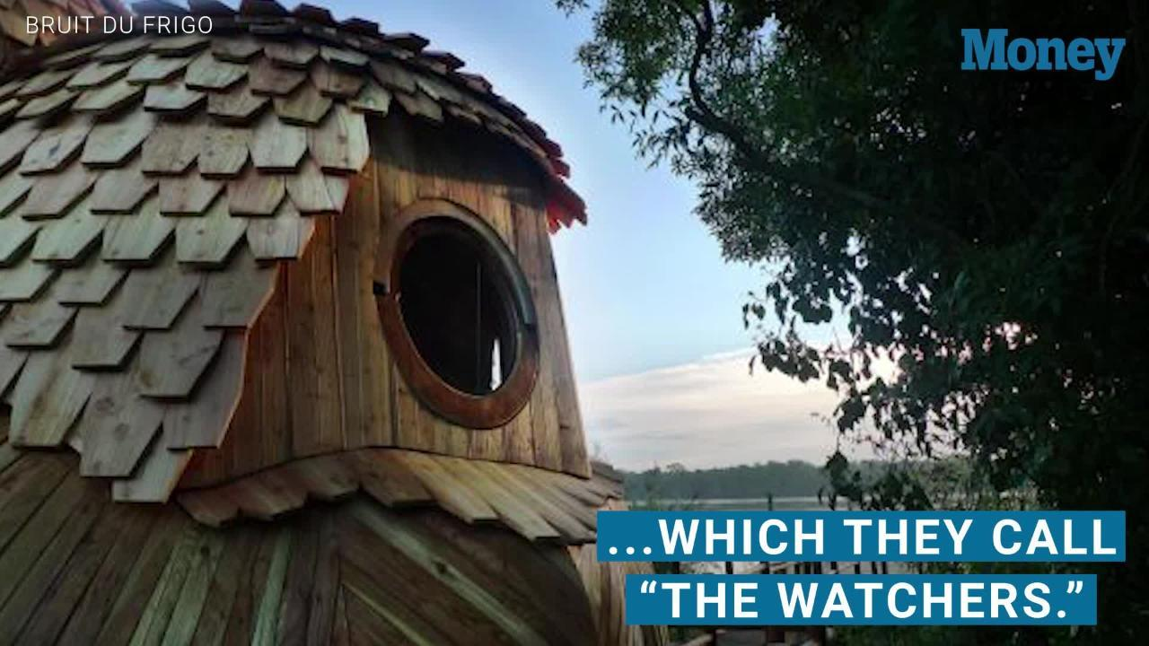 Stay In These Adorable Owl-Shaped Cabins for Free in France!