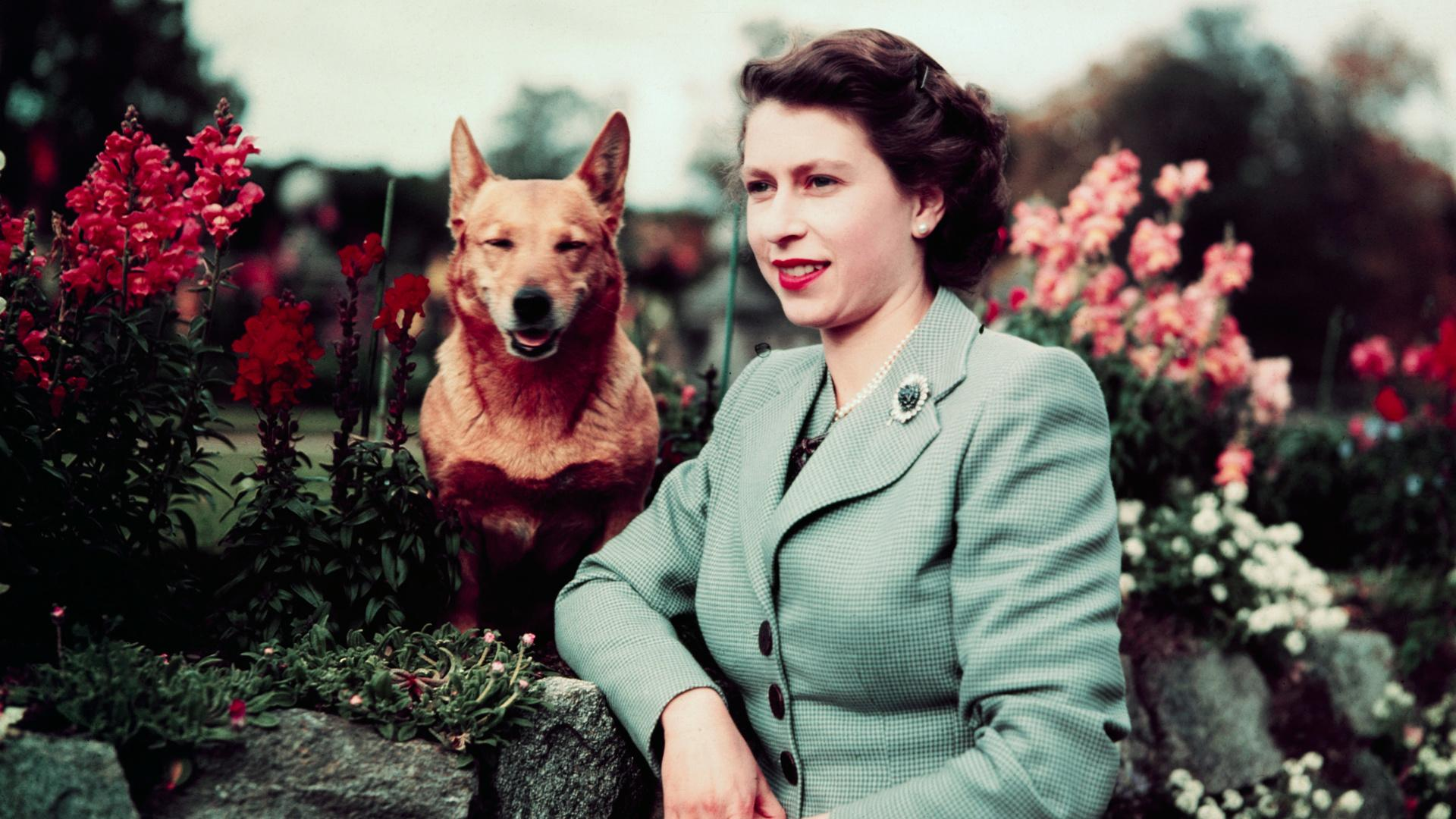 Queen Elizabeth Has Adopted a New Dog
