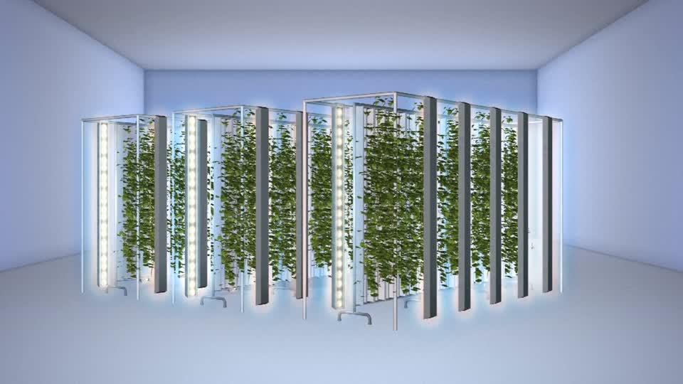 Vertical farming startup gets $200 million investment from tech giants