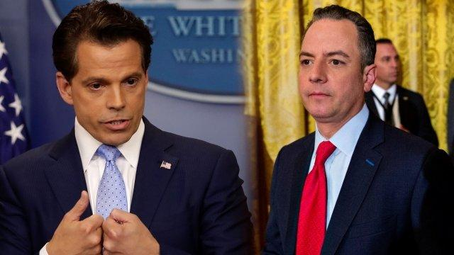 Scaramucci Implies Priebus Is Leaking to the Press