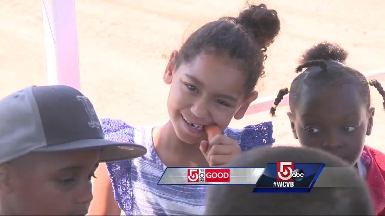 City kids get a taste of country with program