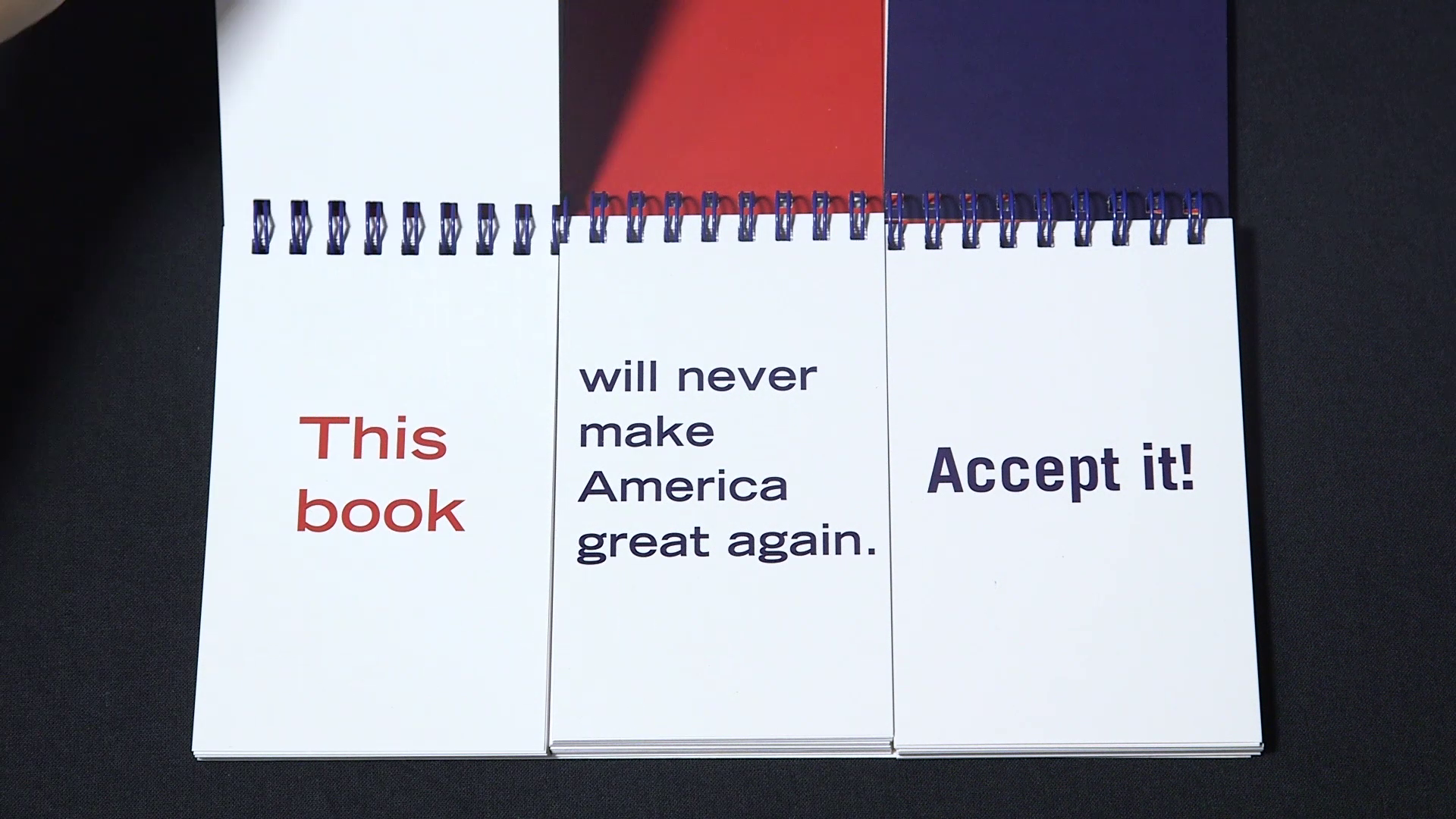 AMERICA HAS VERY NICE LEGS: The Trump Flipbook