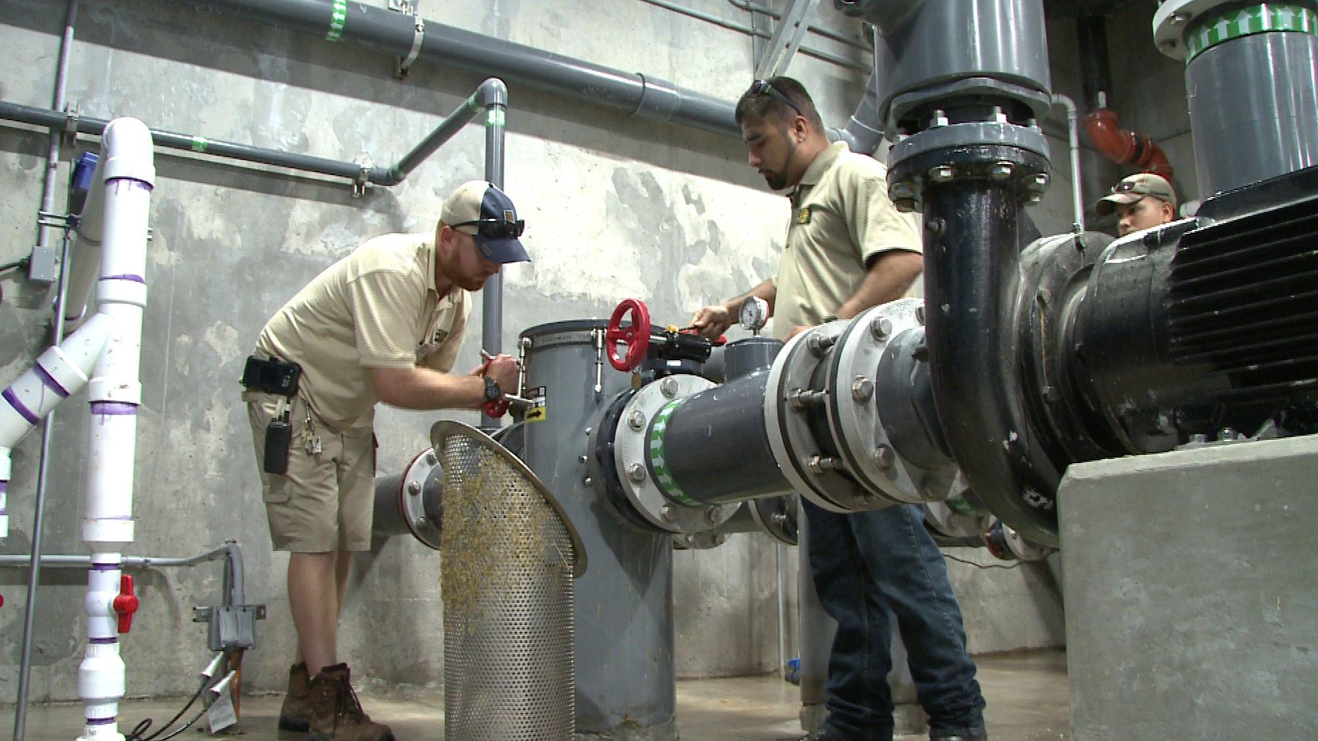 Dallas Zoo Workers Save the Day During Water Main Leak