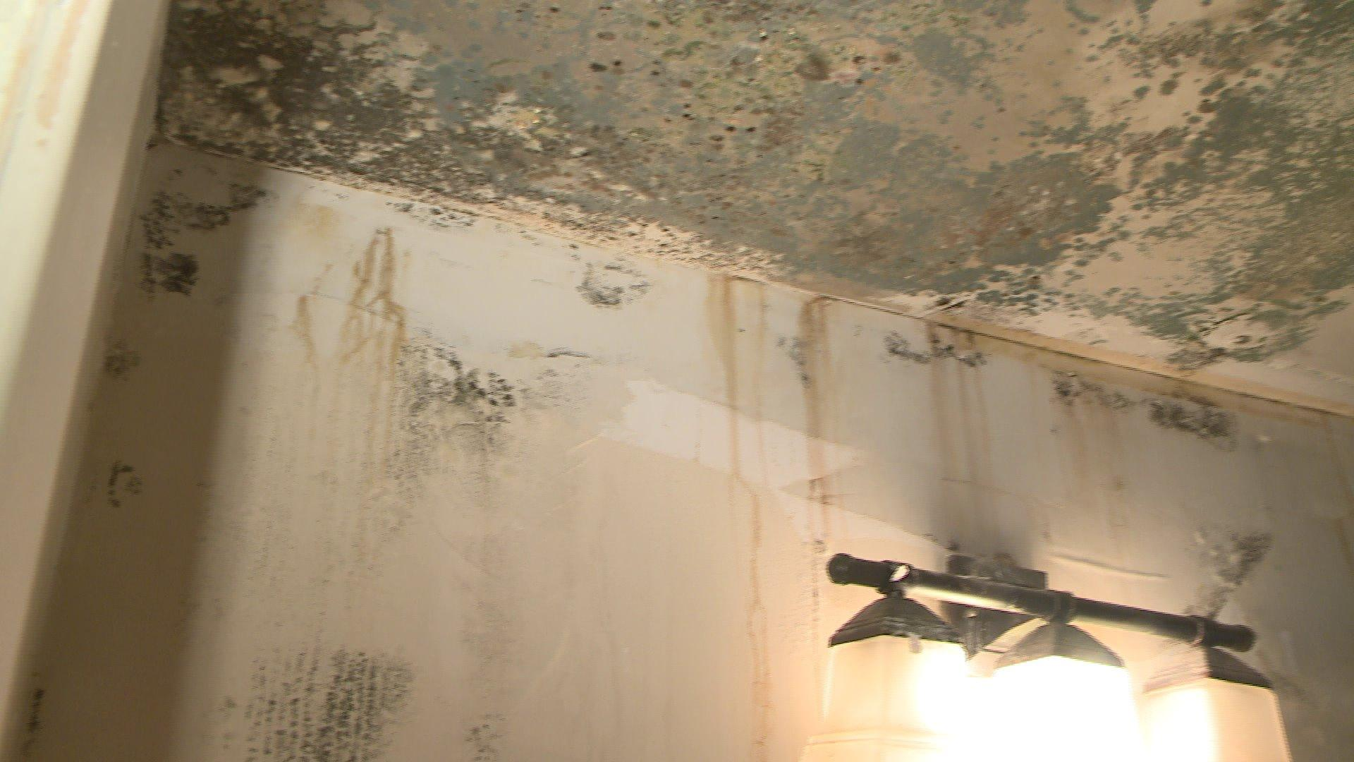 Ceiling Collapses on Teen Girls in Home Resident Says is Riddled With Problems