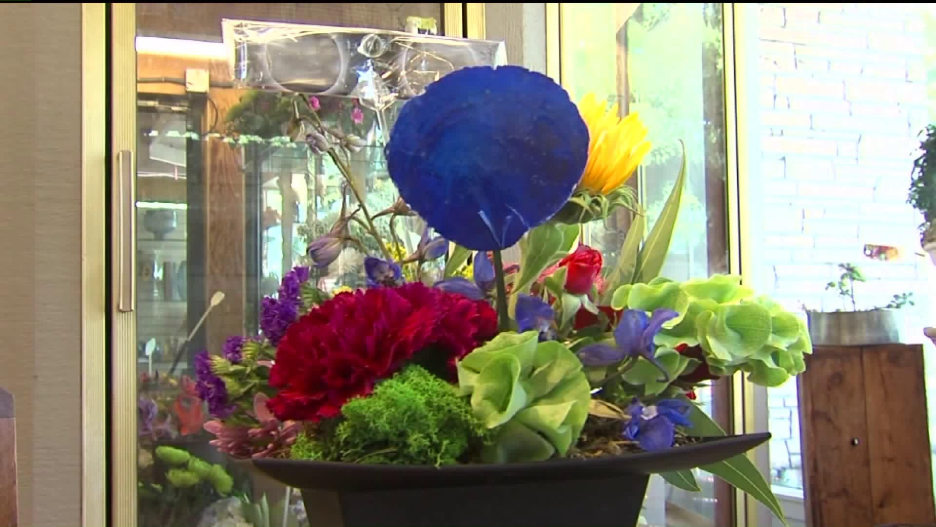 California Florist Gets Creative With Solar Eclipse Craze