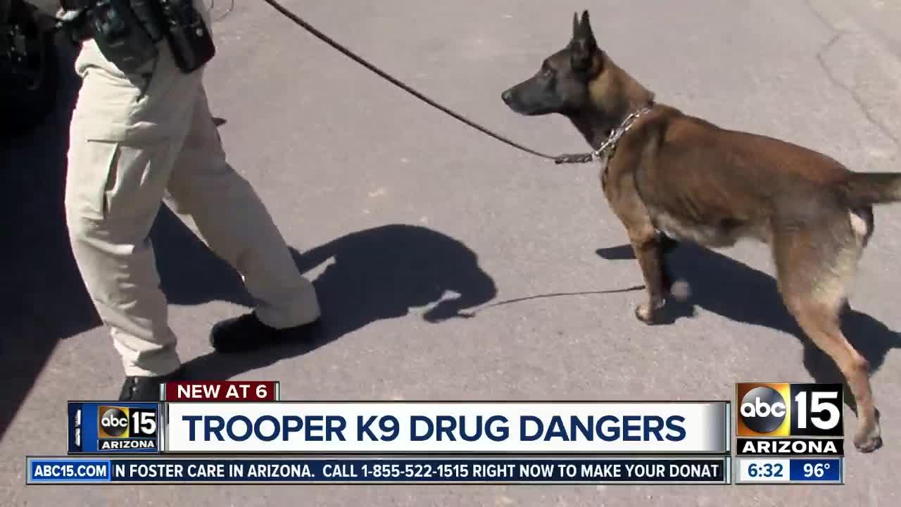 Powerful drugs raising danger for K9 officers across Valley