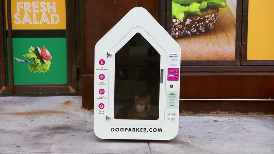 New Yorkers can park their pooch while they shop