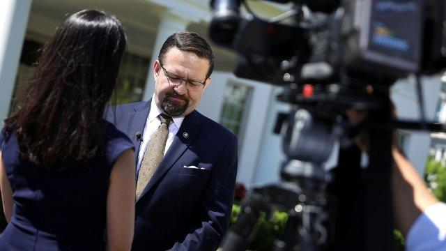 Sebastian Gorka Has an Active Arrest Warrant Out on Him