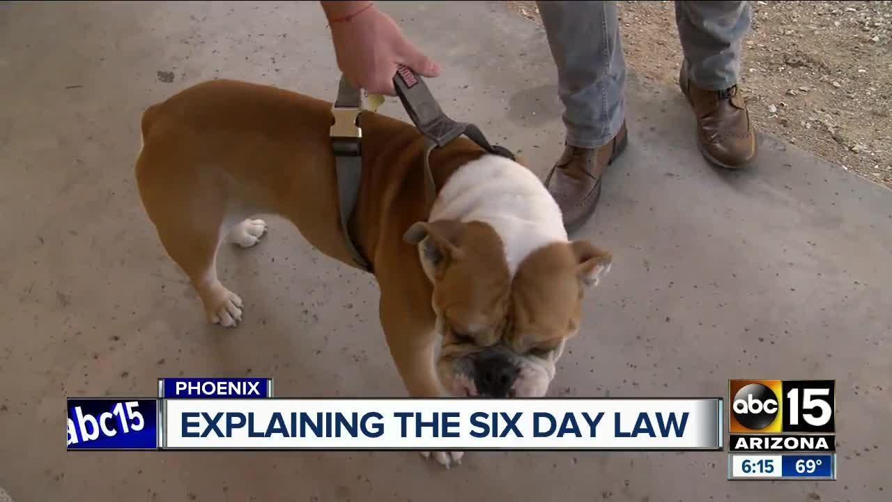 Clarifying Arizona's six day dog ownership law