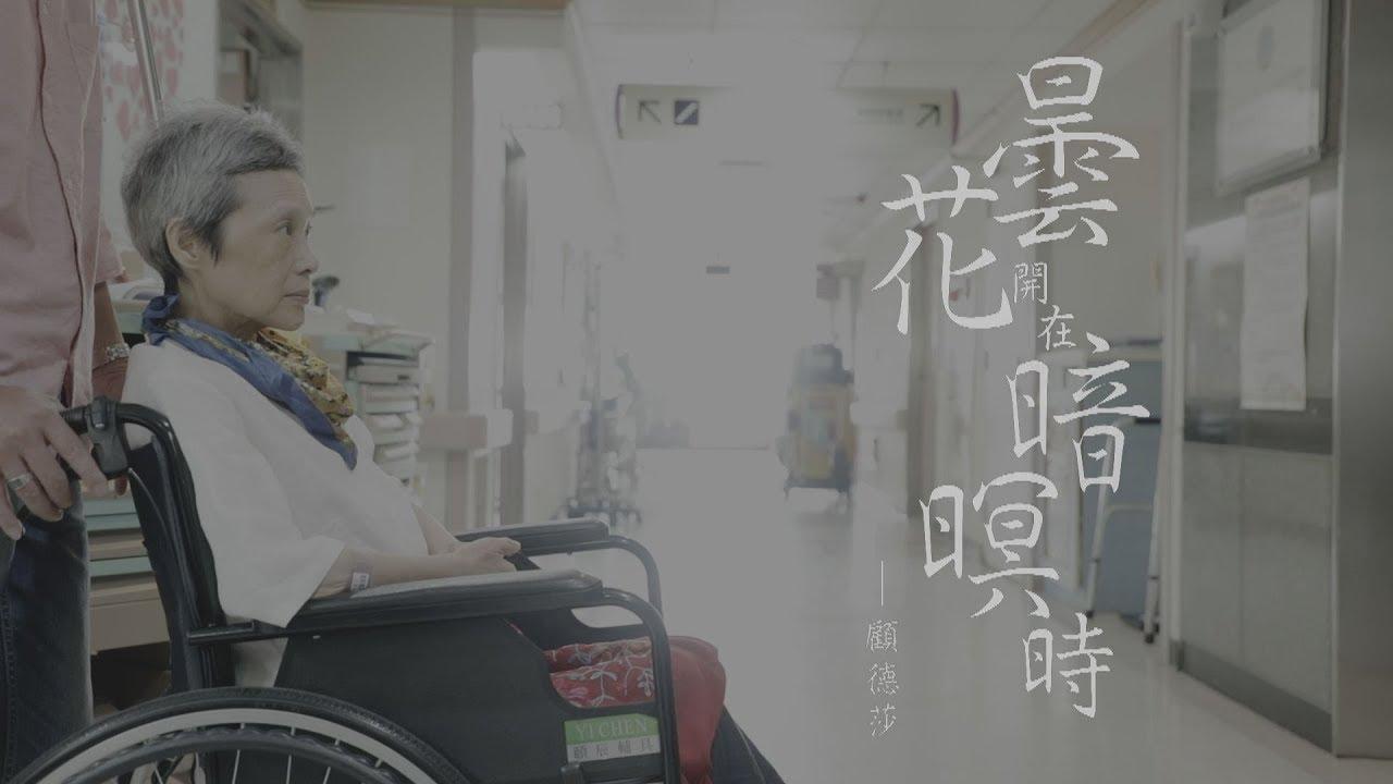 鏡週刊【一鏡到底】曇花開在暗暝時 顧德莎