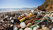 Using These 3 Plastic Products Will Be ILLEGAL In 2020