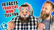 10 cat facts your cat won't tell you