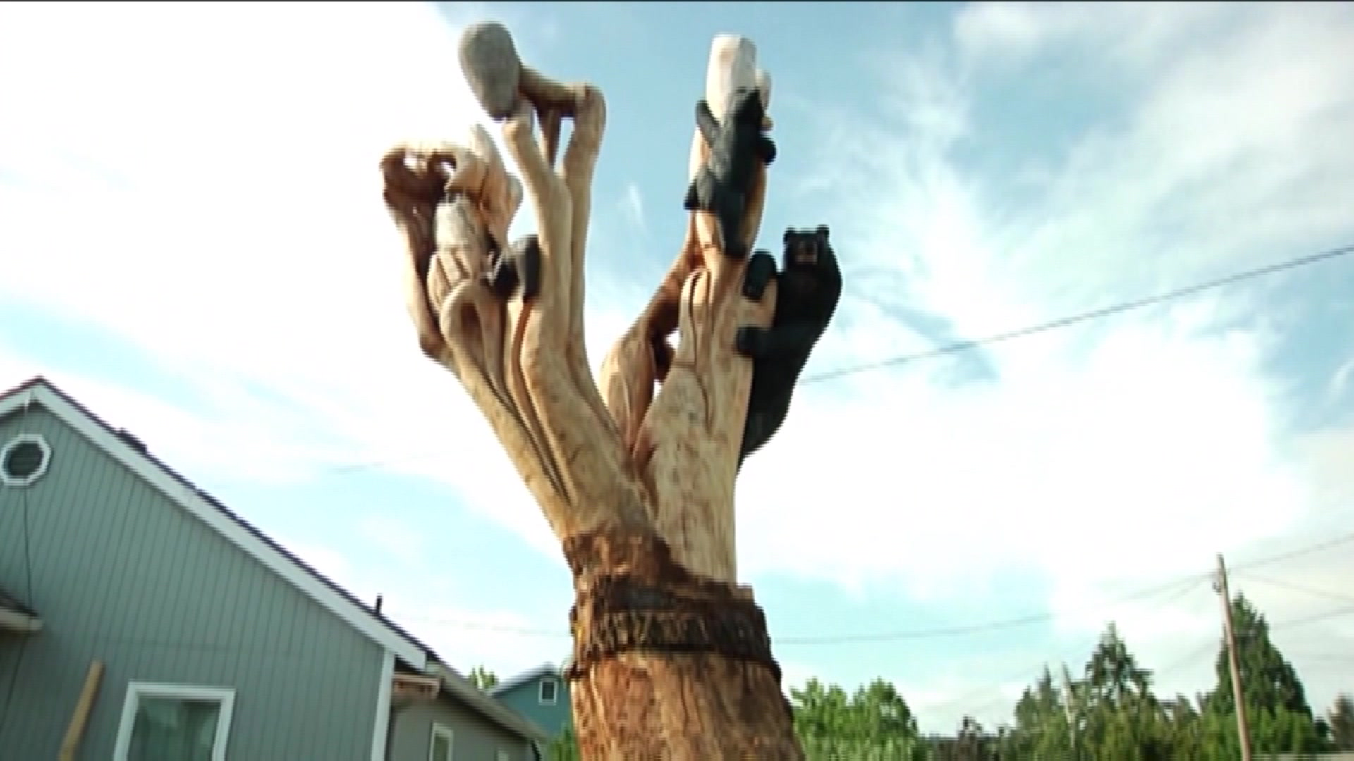 Man Turns Damaged Tree Into A Magnificent Work of Art