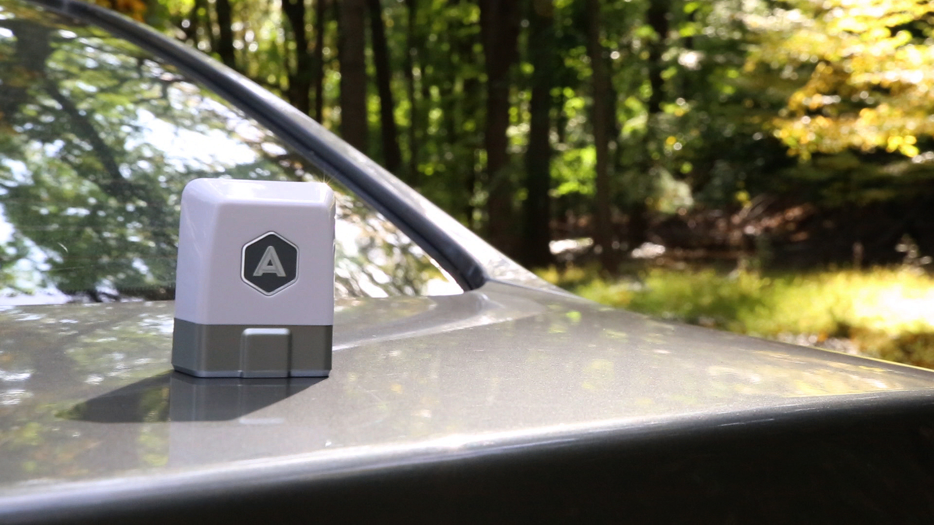 Take a Drive with the Automatic Link Dongle