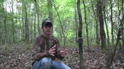 South Rut Report: Use Mock Scrapes to Relocate Bucks