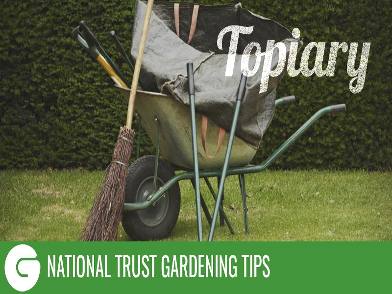 National Trust Gardening Tips: Topiary