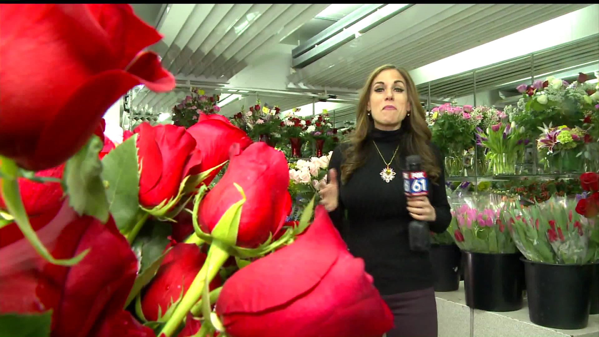 How To Protect Your Flowers During A Polar Vortex