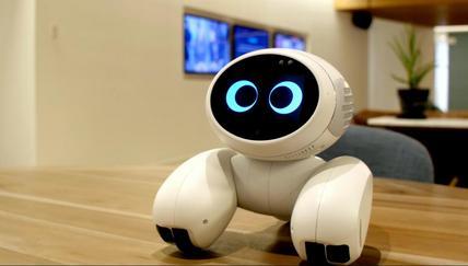 Meet Domgy the pet robot