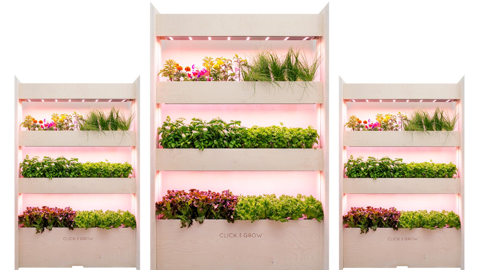 This NASA-Inspired Garden Grows Food In Your Living Room