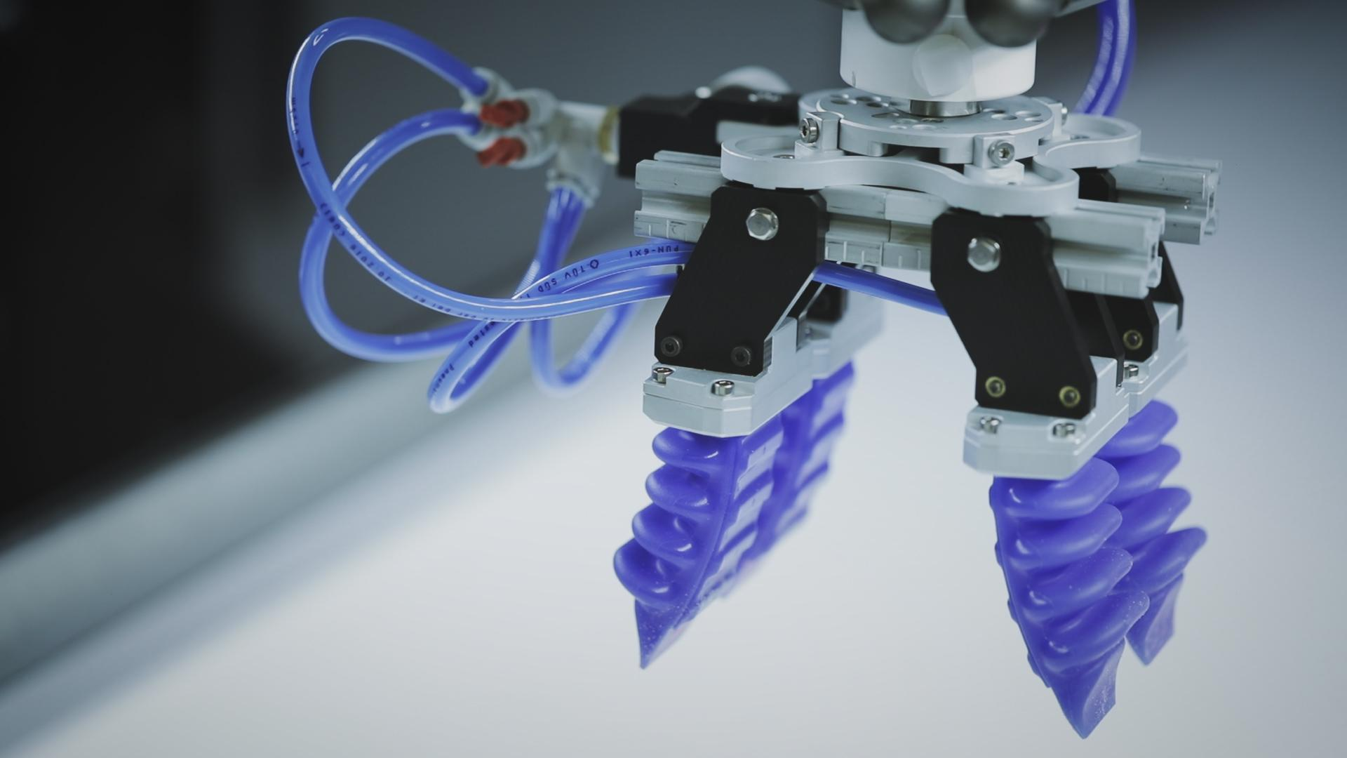 Why Soft Robotics turned octopus-inspired robots into industrial grippers
