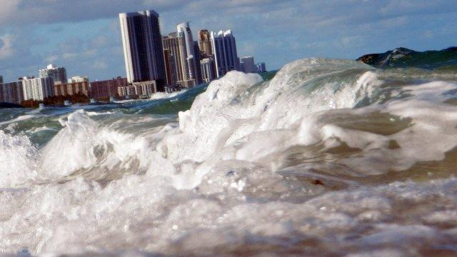 Scientists say Miami could cease to exist within our children's lifetimes