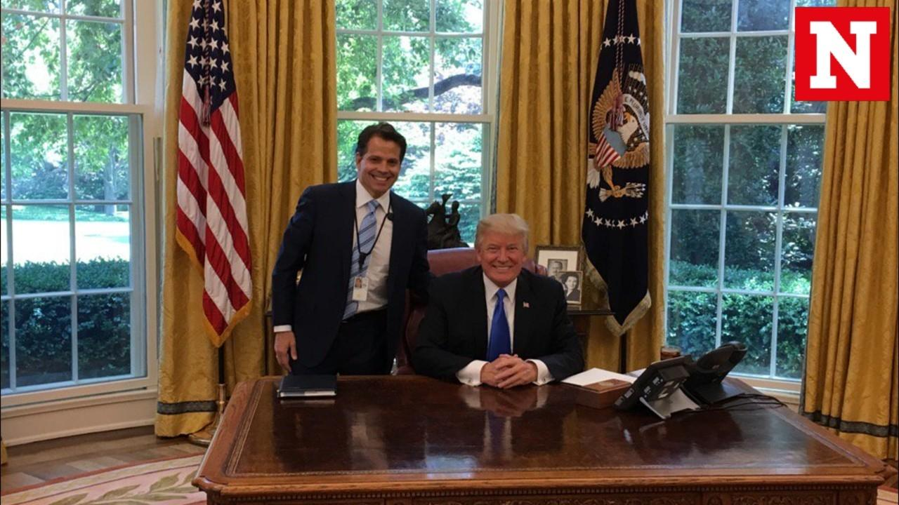 Image result for Mooch Scaramucci with Donald Trump