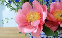 Summer Flowers 101 with L'Atelier Rouge