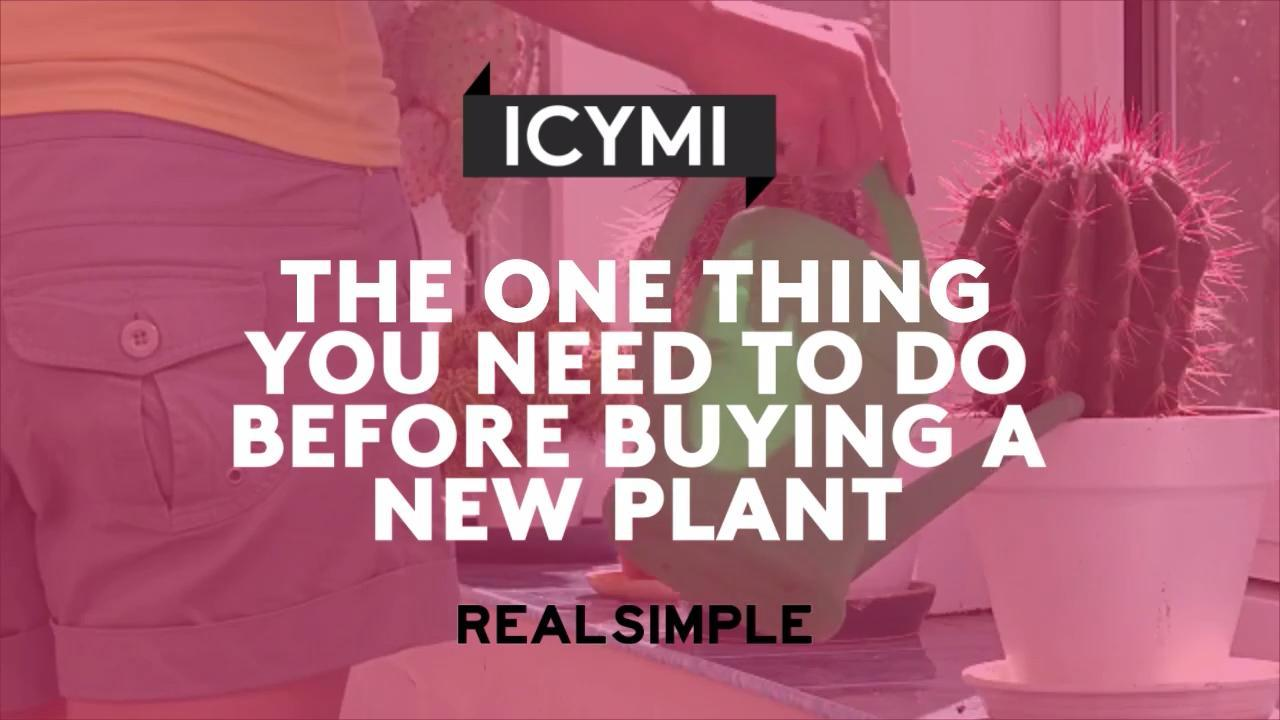 The One Thing You Need to Do Before Buying a New Plant