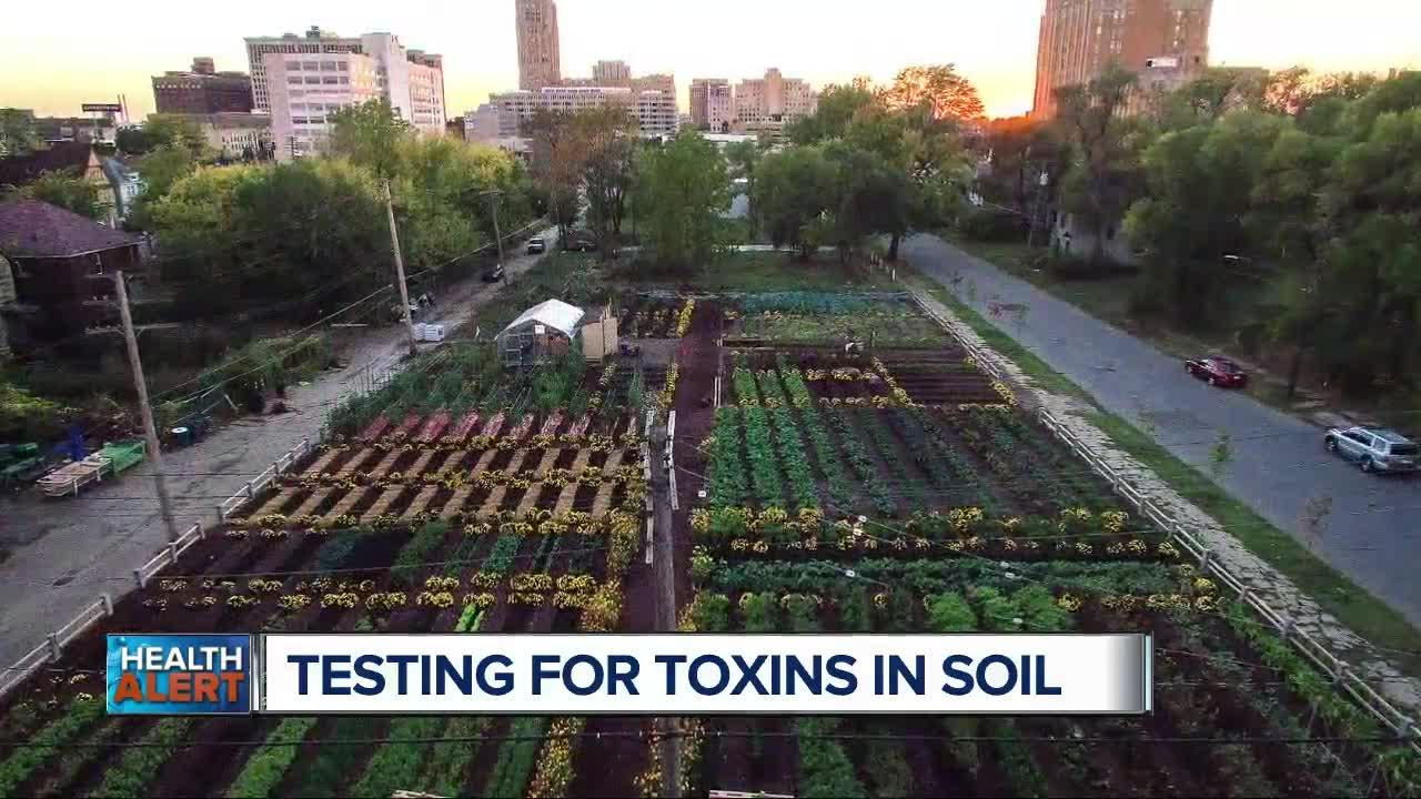 Testing for toxins in soil