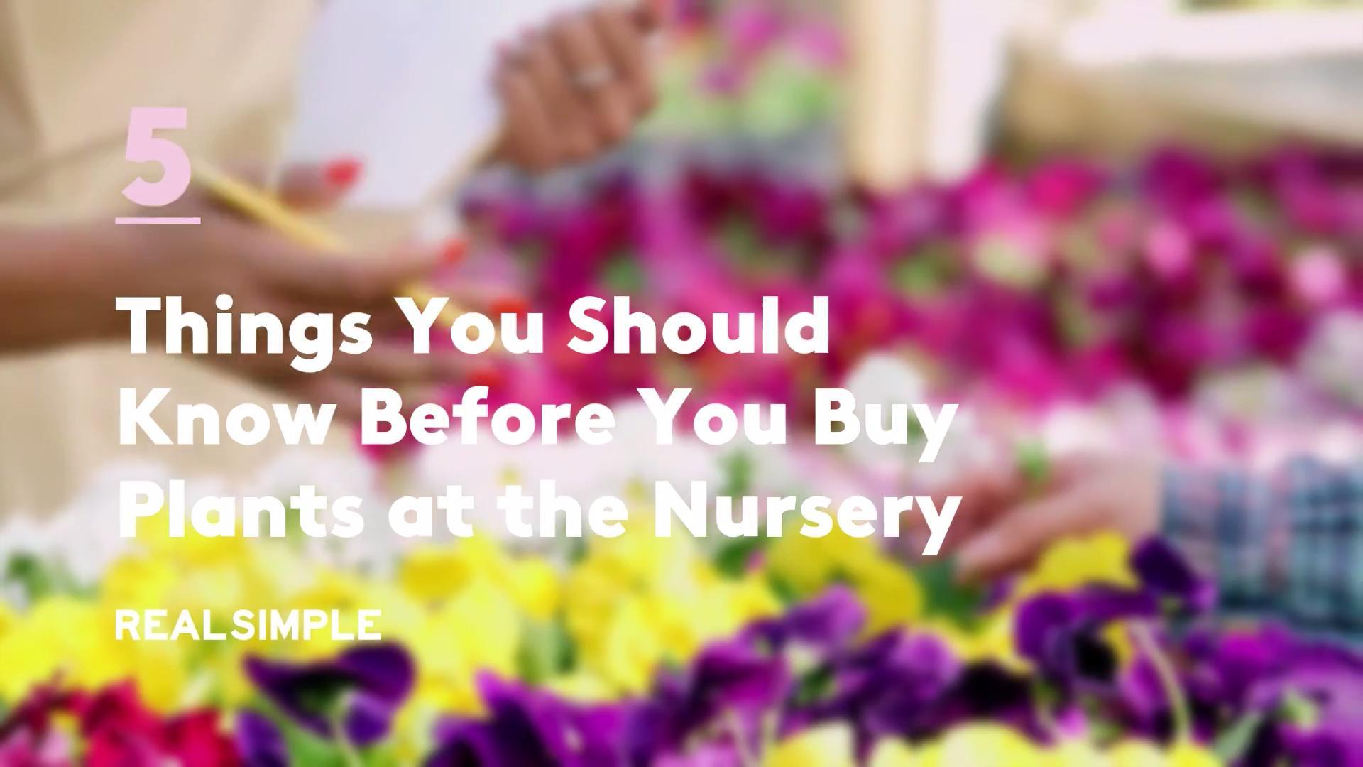 5 Things You Should Know Before You Buy Plants at the Nursery