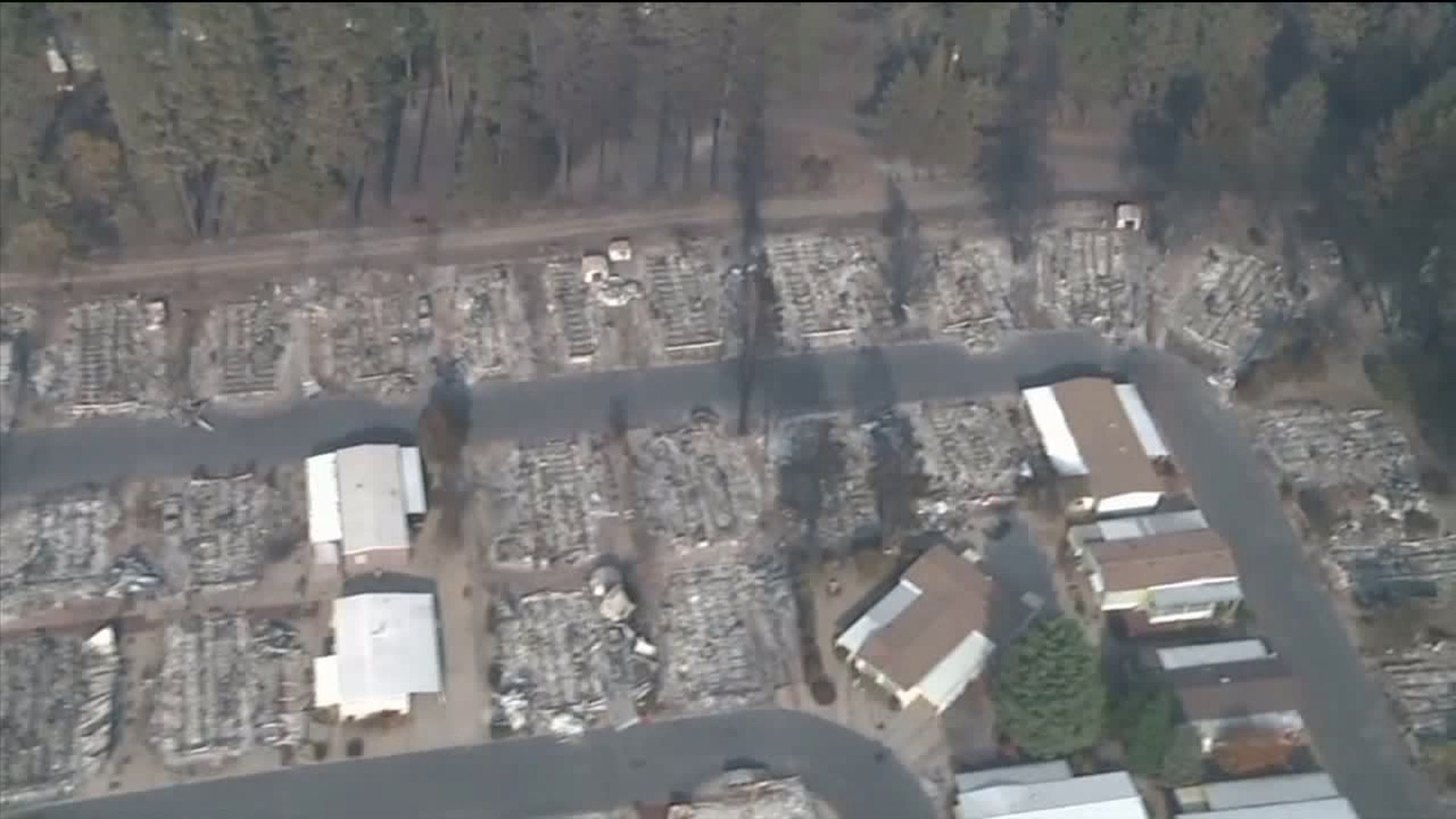 None - Camp Fire Death Toll Increases To 81