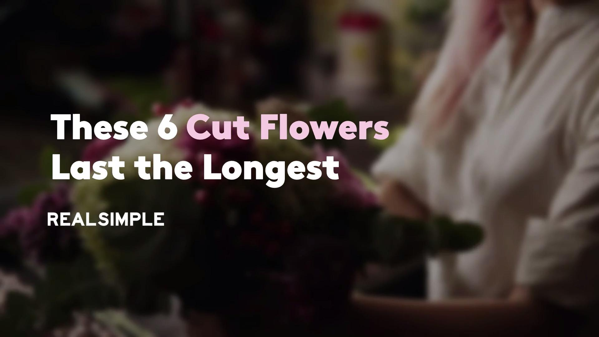 These 6 Cut Flowers Last the Longest