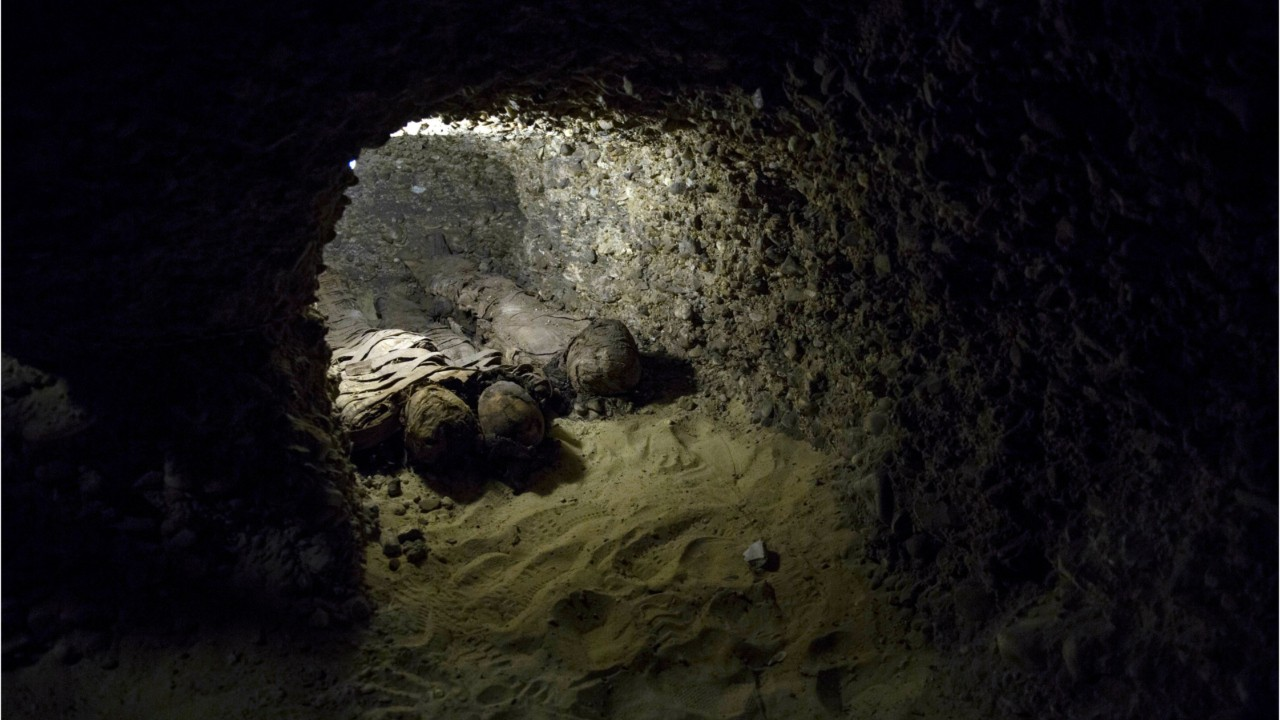 Dozens Of Egyptian Mummies Discovered