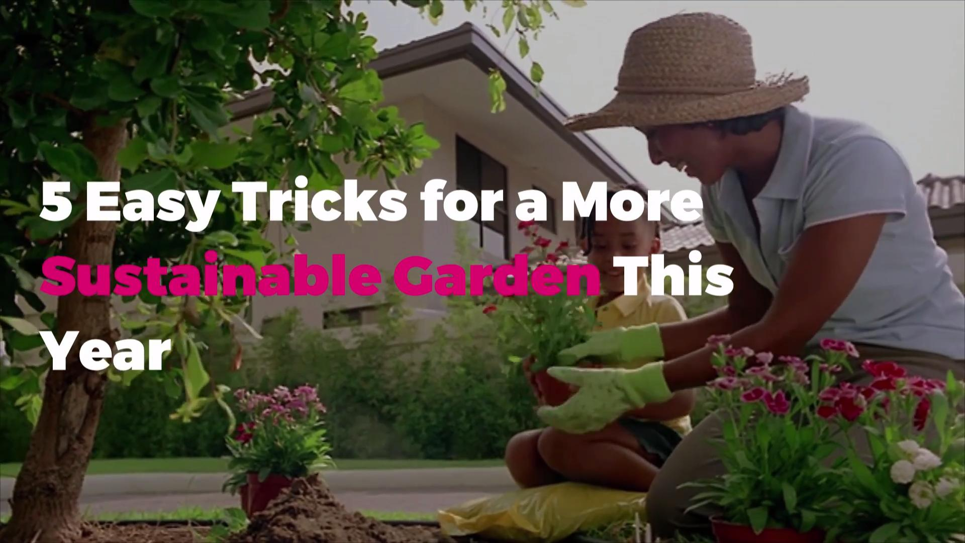 5 Easy Tricks for a More Sustainable Garden This Year