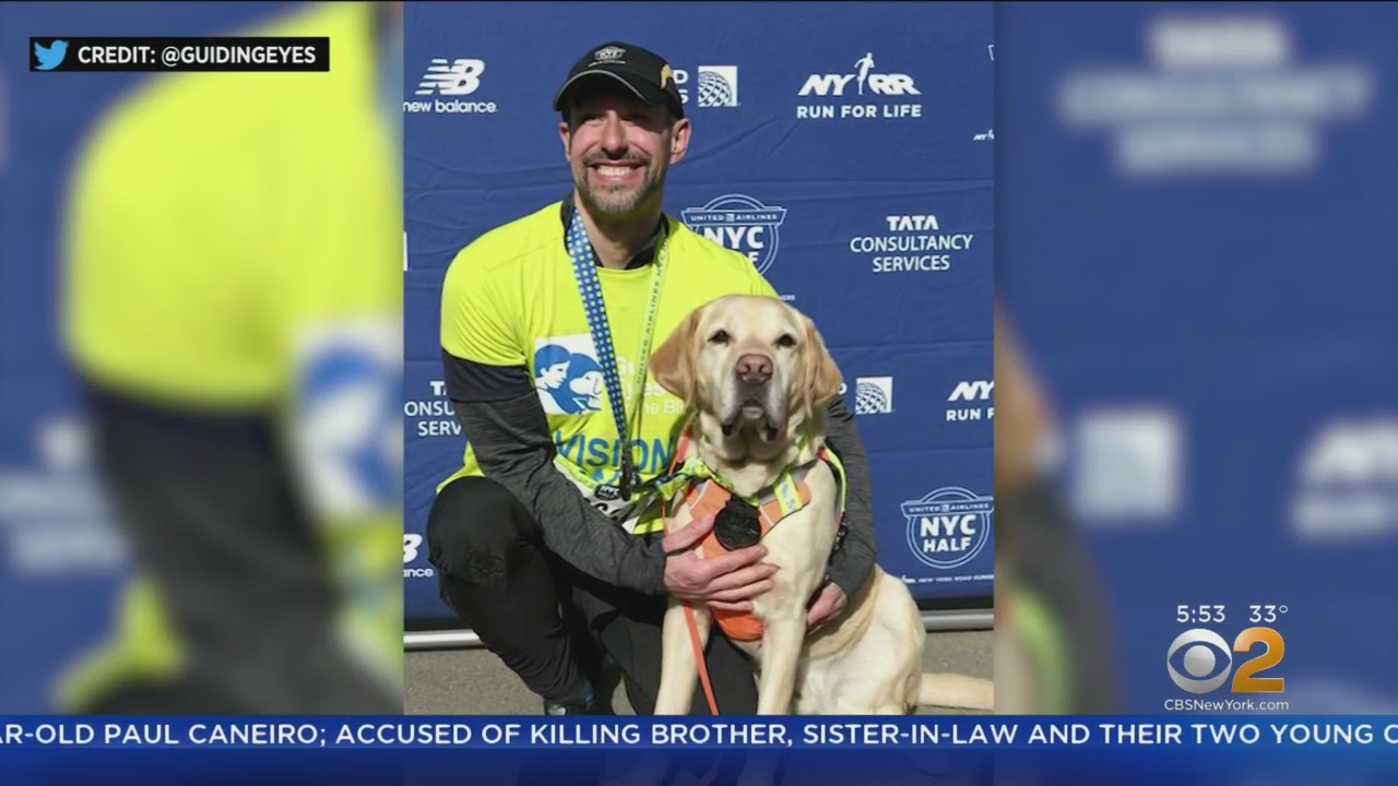 Thomas Panek makes history as first blind person to finish New York City Half Marathon with assistance of 3 guide dogs