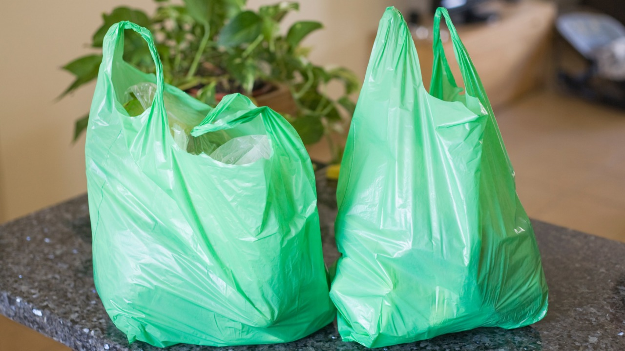 Are Plastic, Paper Or Reusable Bags Better For The Environment?