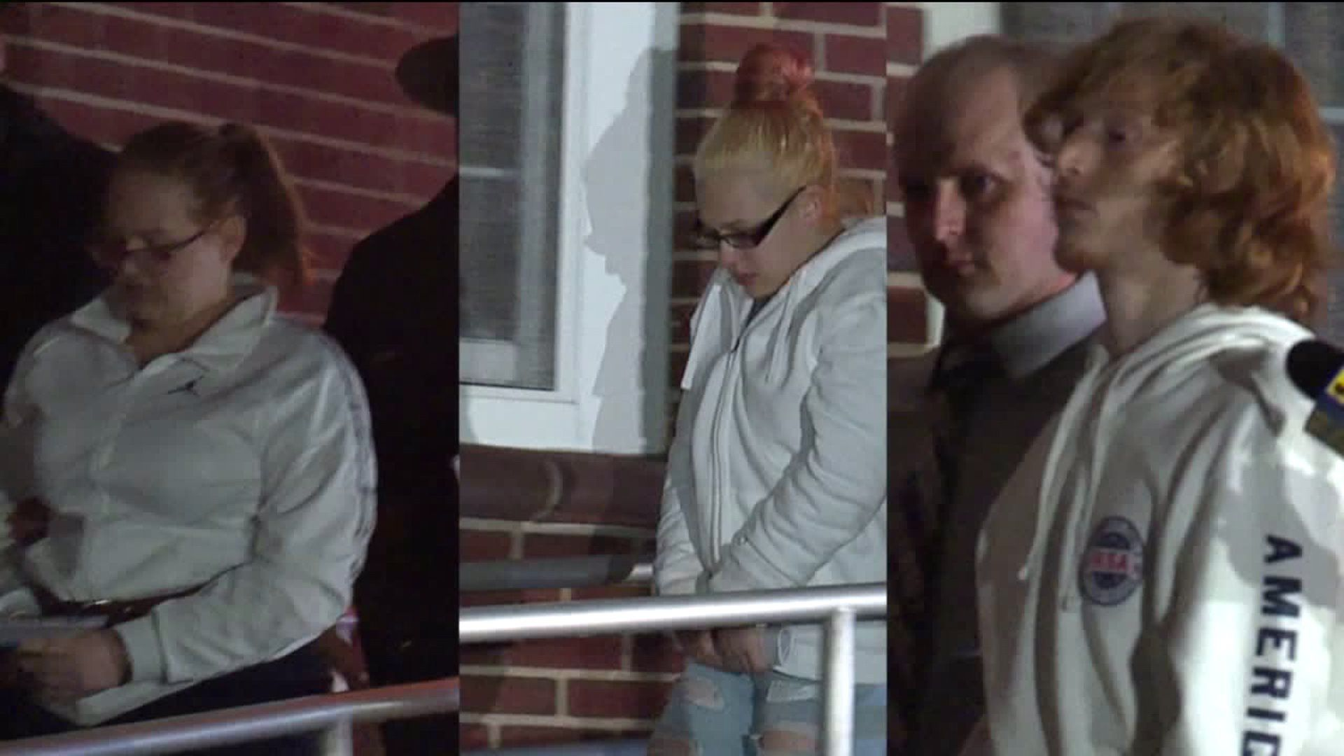 Teen accused of leading friends to rob, kill grandfather