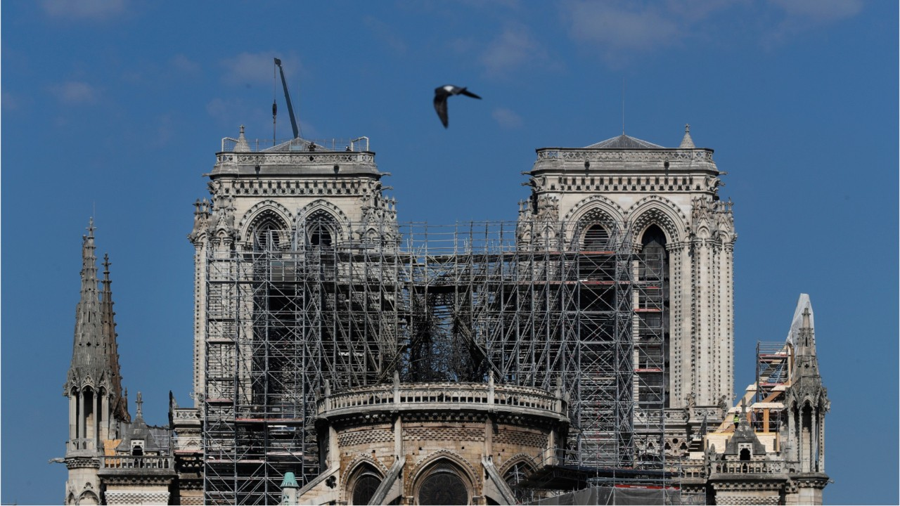 Bees Kept In Notre Dame Cathedral Roof Found Alive And Buzzing After Blaze
