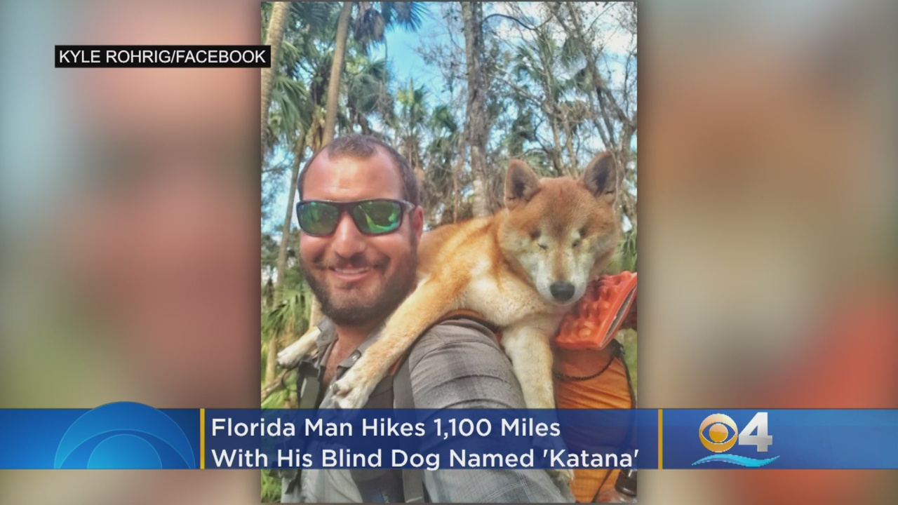 Man helps blind dog regain confidence by hiking 1,100 miles together