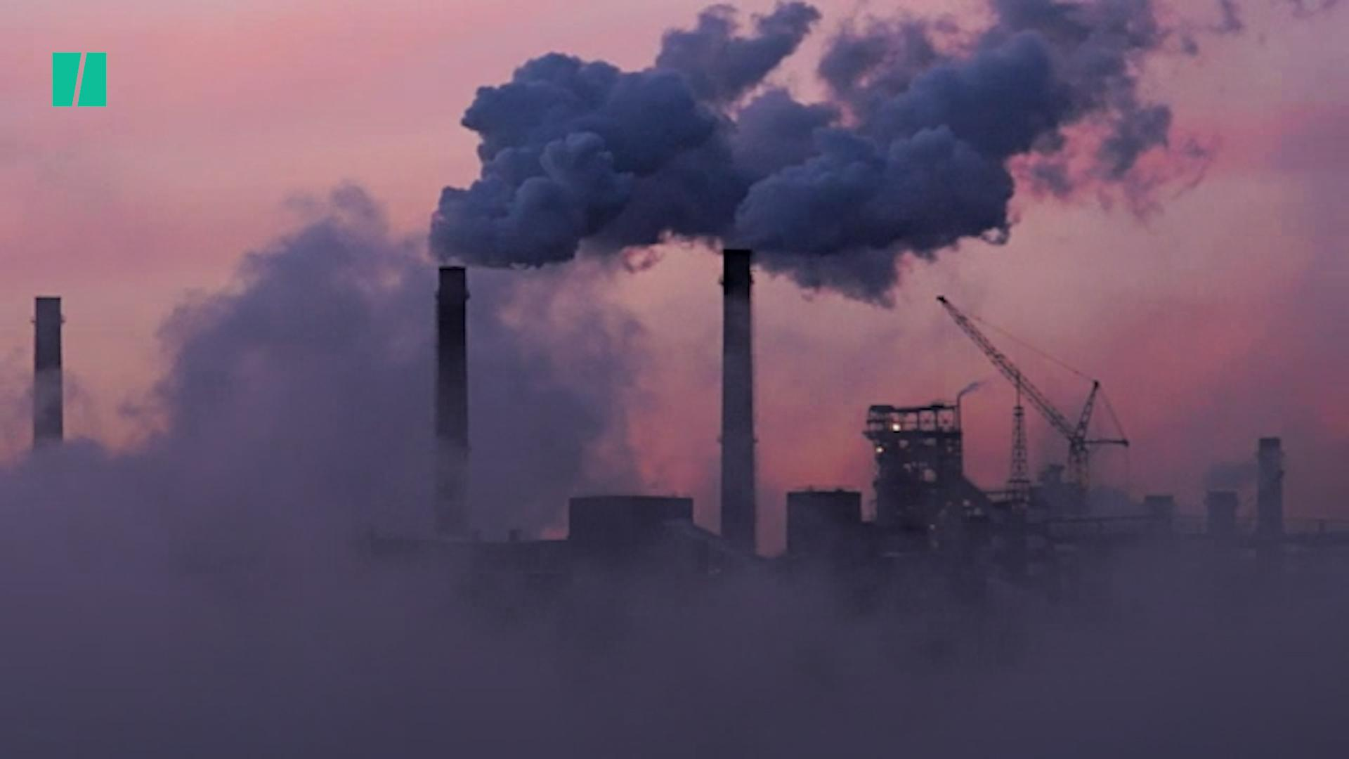 Parliament Declared A Climate Emergency – Now It Must Ditch Fossil Fuels