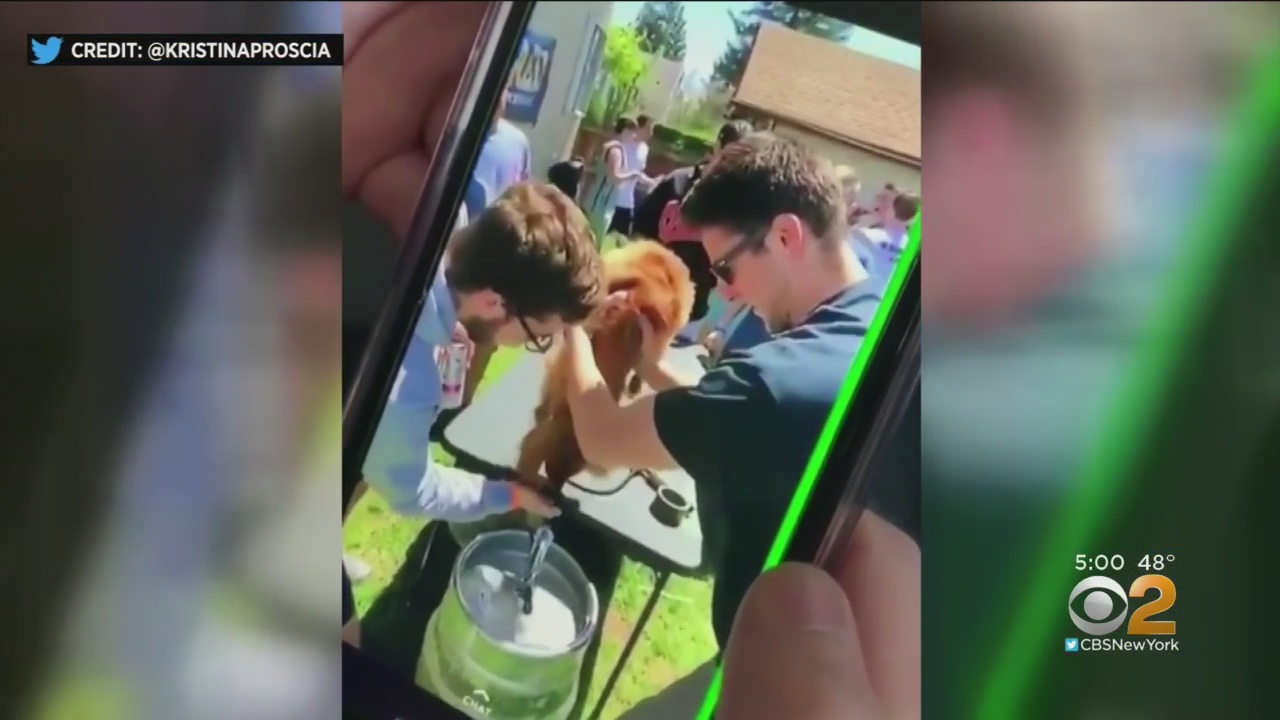 College suspends fraternity after video shows students forcing dog to drink beer