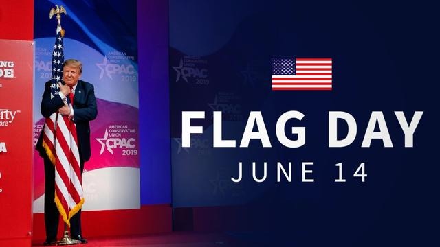 White House Sparks Anger With 'Real Real Weird' Flag Day Tweet