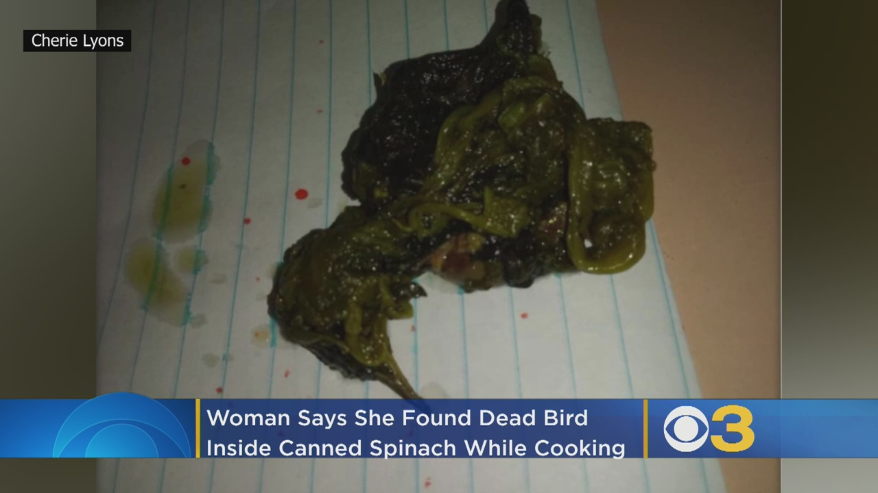 Pennsylvania woman repulsed after finding fully intact dead bird in can of spinach
